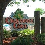 crocodile cove