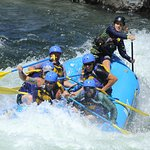 Foto Action Whitewater Adventures - Day Trips
