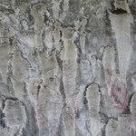 Pictograph Cave State Park resmi