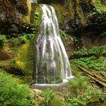 صورة فوتوغرافية لـ Spirit Falls