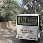 Tour bus inside oasis