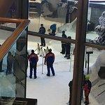 Foto di Ski Dubai