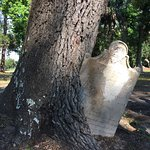 ภาพถ่ายของ Zion Cemetery and Baynard Mausoleum