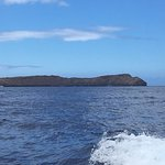 A crater island, Molokini - great place to snorkel!