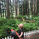Billede af The Enchanted Forest