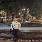 Photo of Jardin Centenario