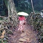 The living root bridge at Mawlynnong