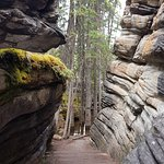 Athabasca path