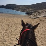 Photo of Mykonos Horseland
