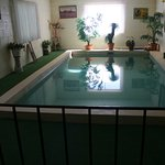 Indoor pool added on extension, great for parties!