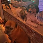 Celebrity Lounge Bar & Grill resmi