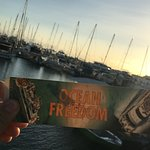 Ocean Free and Ocean Freedom Photo