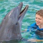 Photo de Dolphin Connection