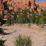 Billede af Bryce Canyon ATV Adventures