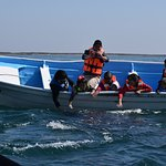 Whale Watching in Magdalena Bay Season is January through April. Book your stay at Whales Tale I