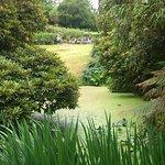Lovely ponds and hillsides
