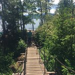 Tubbs Hill Nature Trails照片