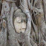 Wat Mahathat의 사진