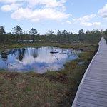 Photo of Lahemaa National Park