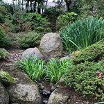 Photo of Lafcadio Hearn Japanese Gardens