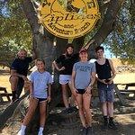 Zdjęcie Yosemite Ziplines and Adventure Ranch