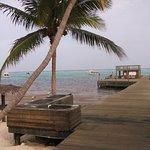 Little Cayman Beach Resort Photo