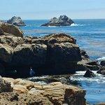 Photo de Point Lobos