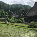 ภาพถ่ายของ The Historic Villages of Shirakawa-go Gassho Style Houses