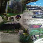 Brochure of the place with a map and a QR code