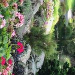ポラード・パークの写真