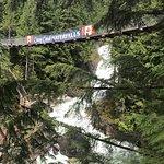 Crazy Creek Suspension Bridge resmi