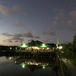 Fishville at night