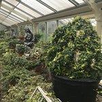 صورة فوتوغرافية لـ Buffalo and Erie County Botanical Gardens