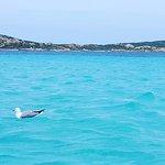 S.Y. Mephisto - Il Piacere del Mare di Giovanni Passarella Foto