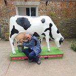 Me milking a model cow!