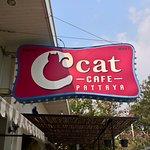 Zdjęcie C Cat Cafe