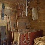 Foto van Muzeum Wsi Radomskiej