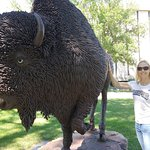 Beautiful buffalo made of rebar.