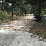 Marjan Park Foto