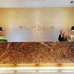 伦敦蒙特卡姆尊贵酒店