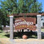 ภาพถ่ายของ Bodega Domingo Hermanos