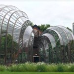 The tropical glass houses