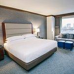 明尼阿波利斯/布卢明顿希尔顿酒店