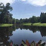 Bellingrath Gardens and Home의 사진