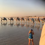 Sunset Camel Ride.