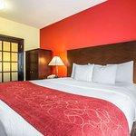 Comfort Suites Rock Hill