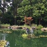 Foto van New Hanover County Arboretum