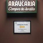 Φωτογραφία: Araucaria