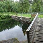 Foto de Hiking in Bymarka
