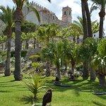 Foto de Castillo de Peñíscola